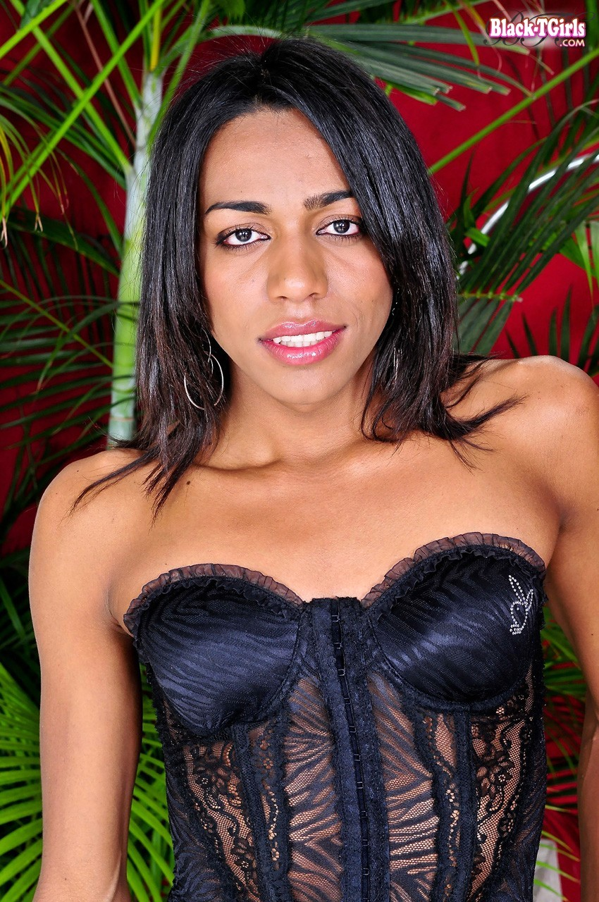 American Tgirls Porn ts playgirl – transexual playgirls – tranny porn – shemale porn